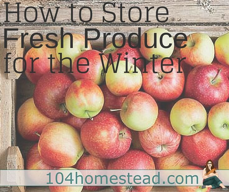 Frozen and canned produce is good, but sometimes fresh produce off-season is better. Discover how to use Fresh Storage to enjoy fresh produce year round.
