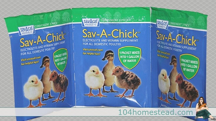 Sav-A-Chick is premeasured, it's easy to find, it's made for poultry specifically, and contains vitamins A, E, D, C and seven B vitamins.
