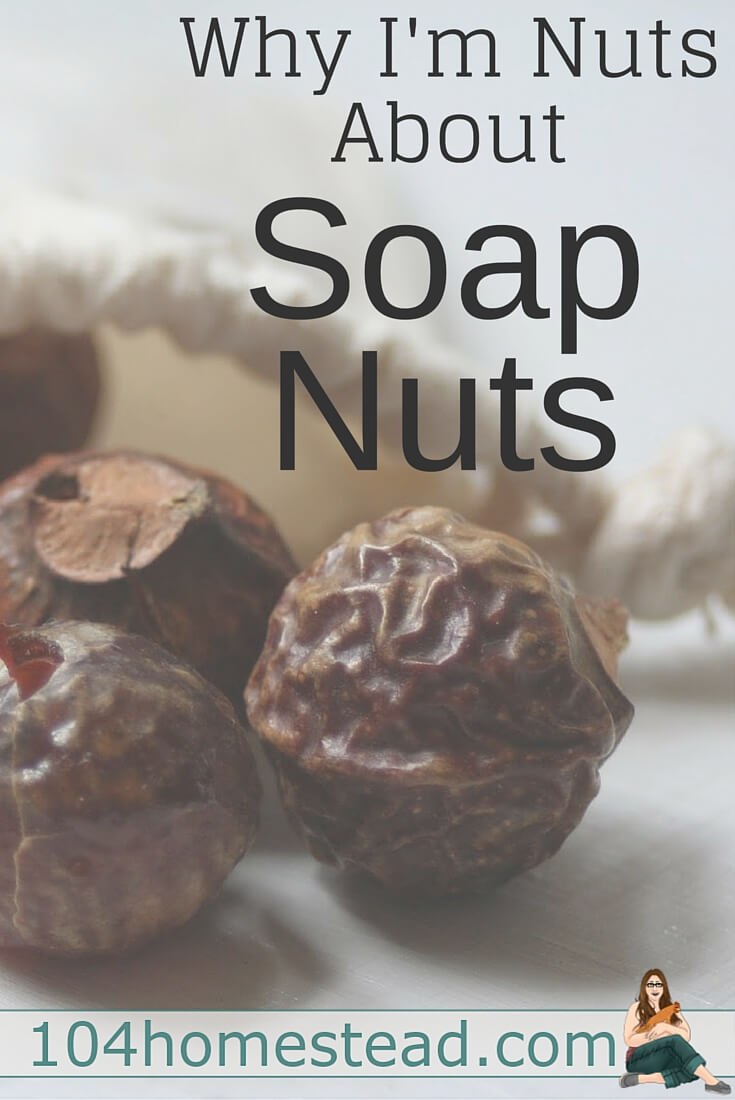 Soap nuts have the ability to serve your home from the moment they arrive in their recyclable cardboard box to the moment they're compost for your gardens.