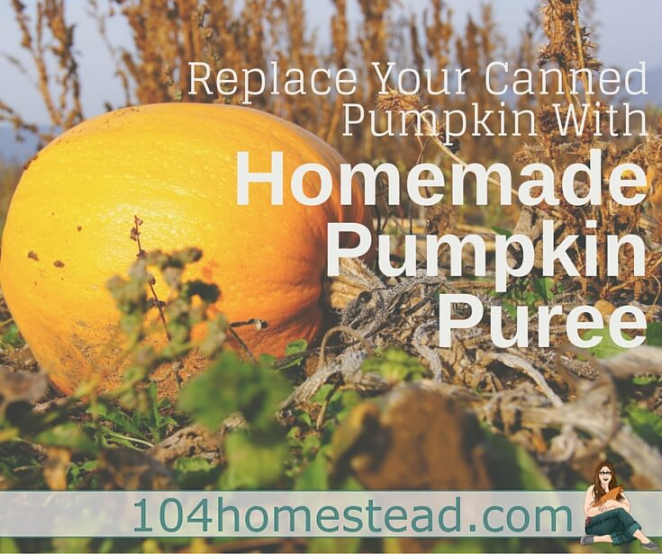 Make your own organic homemade pumpkin puree. It tastes better, it's better for you, and it's even fun to make.