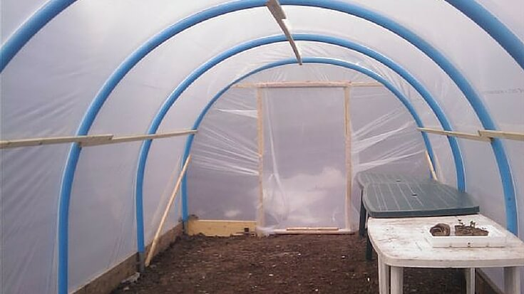 Greenhouses are large enough to walk into. Cold frames allow you to plant directly into the ground. Polytunnels give you the best of both.