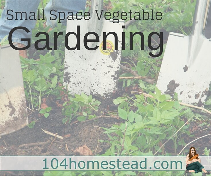 Discover ways to vegetable garden in a small space. With a little creativity and ingenuity, you can provide food for your family even in the smallest of small spaces.