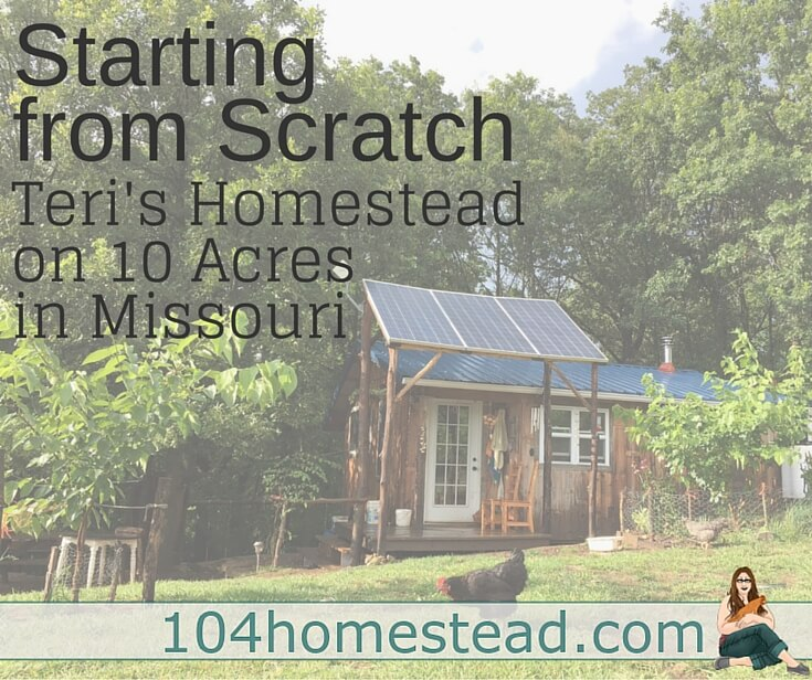Teri lives on 10 acres in Missouri with her family of four. She is the writer of Homestead Honey and today she is sharing her homesteading journey with us.