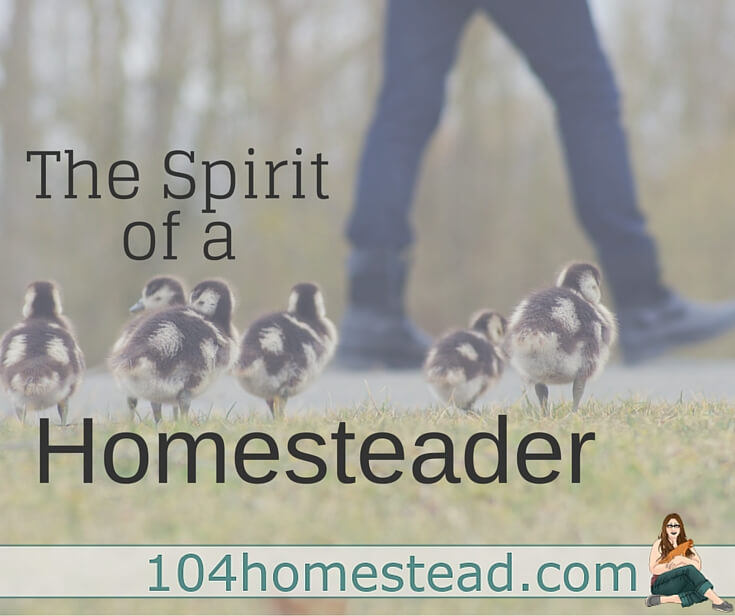 The essence of a homesteader is simplicity. Imagine the social ills that have simple & beautiful solutions when we live & work toward a simpler way of life.