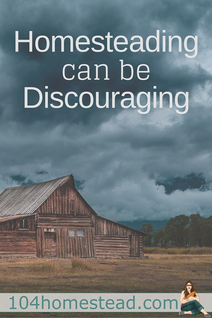 An honest conversation about the struggles and discouragement of learning to homestead. It's not all rainbows and sunshine people!