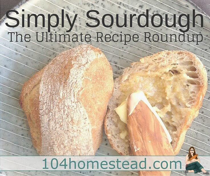 I don't know about you, but I love sourdough. I still haven't managed to master making sourdough breads, but these fabulous recipes certainly have me inspired to try a bit harder.