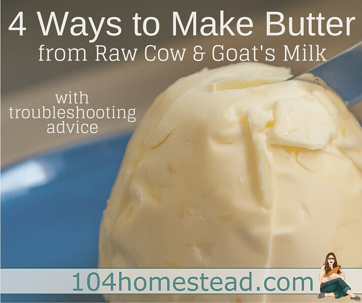 Homemade butter made from store-bought raw milk will save you about 7¢ a stick, but made from raw milk that came from your own animals can save you 100%.