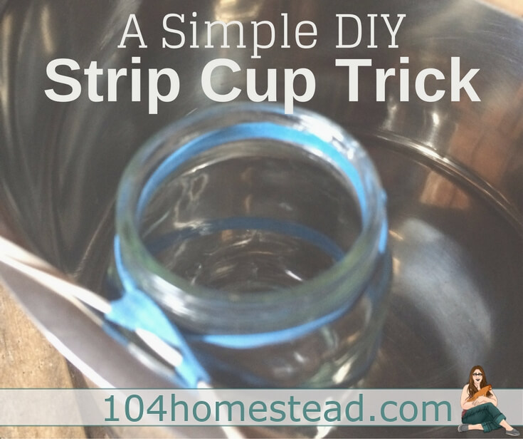 Why you need to use a strip cup when you're milking and how to make your own. This DIY strip cup is cheap and easy to put together.