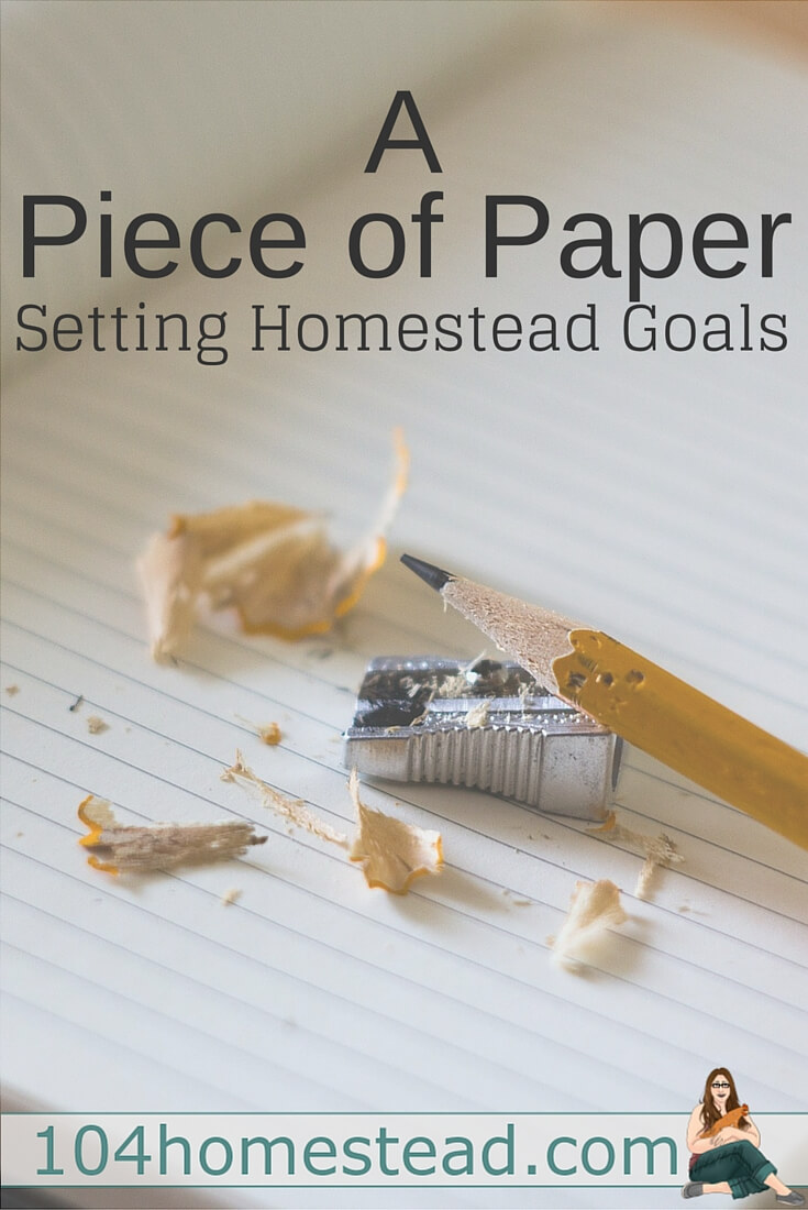 "A short story of how I got into homesteading and the dream I had for first ""real"" year. Find out how I created attainable and manageable homestead goals."