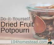 Dehydrated Fruit Potpourri – The Healthier Choice