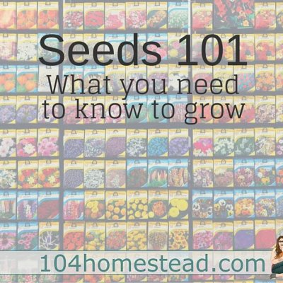 Your Guide to Reading and Understanding a Seed Packet