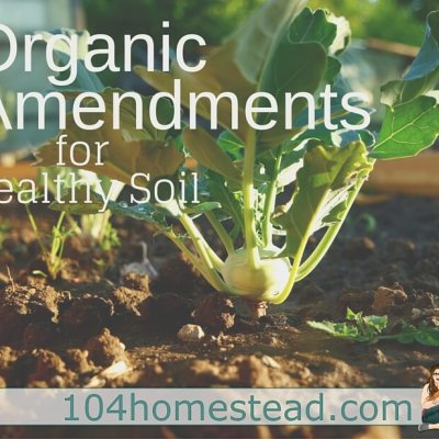 Organic Amendments for Healthy Soil