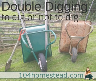"There is much debate on whether or double digging is a good idea. May big-time gardening experts say you should, other say ""no way! It destroys the soil!"""