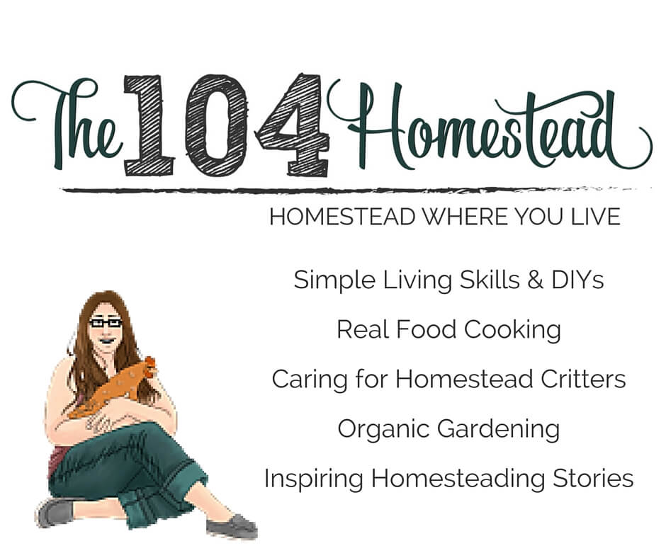Contribute to The 104 Homestead