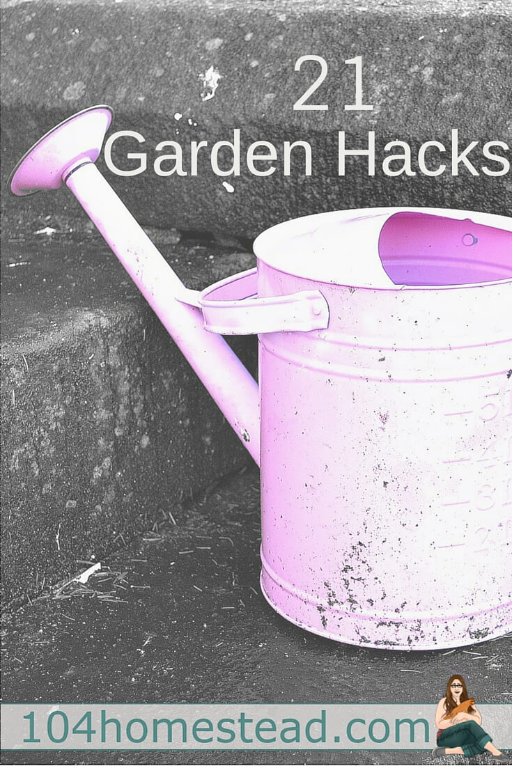 Gardening Hacks: Save money and make gardening just a bit easier with these great tips and tricks. I bet there are a few that will amaze you. Happy gardening!