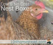 Low & No Cost Nest Boxes