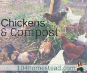 Let Your Chickens Do Your Composting