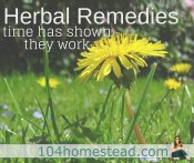 Making Your Own Herbal Remedies
