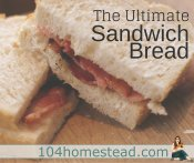 The Ultimate Sandwich Bread