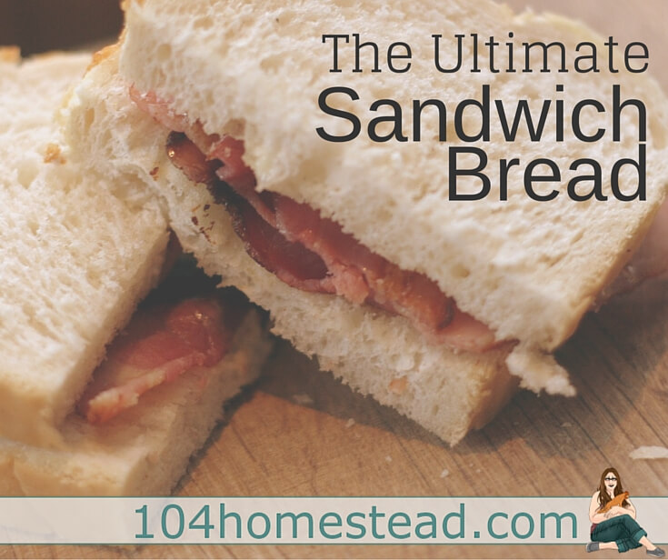 This is an easy homemade sandwich bread recipe that can be made with no fancy equipment. It's been kid tested and I certainly approve. Perfect for PB&Js.