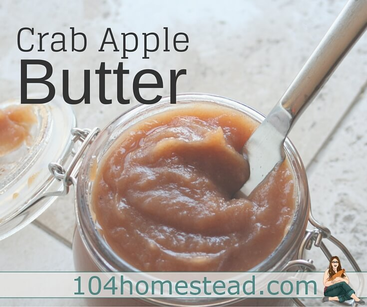 Crab apple butter is an amazing thing. It is like a thick, sweet apple sauce that is used as a condiment. It can be used in a sandwich or on toast.