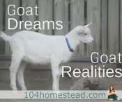 Goat Dreams, Goat Realities