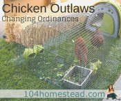 Chicken Outlaws: Changing Ordinances