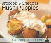Broccoli Hush Puppies & Homemade Ranch Dressing