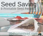 Seed Saving & Printable Seed Packets