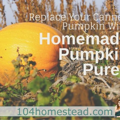 Replace Canned Pumpkin with Homemade Puree