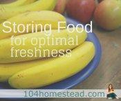 Store Food for Optimal Freshness