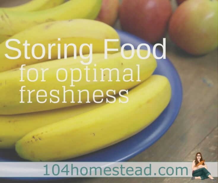 Proper storage of your common food items will increase their freshness duration and prevent premature spoiling. Learn how to store these foods correctly.