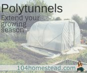 Polytunnels: Extend Your Growing Season