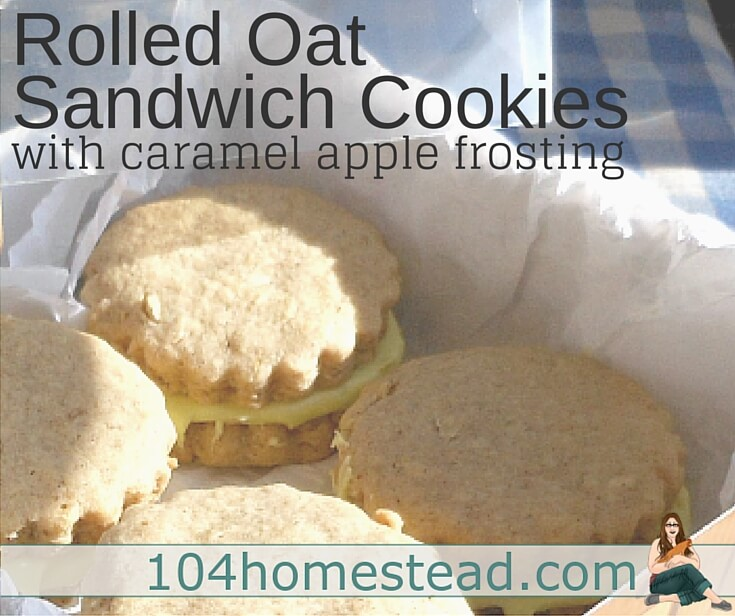 These old-fashioned rolled oat cookies are excellent for gift giving. You can gift them as drop cookies or use cookie cutters and make sandwiches out of them.