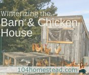 How to Prepare Your Chicken House & Barn for Winter