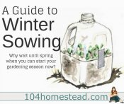A Guide to Winter Sowing {Starting Seeds in Winter}