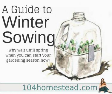 Whether you are a backyard hobby homesteader or an avid homesteader on your journey to live off-grid, these are the homesteading articles you want to be reading.