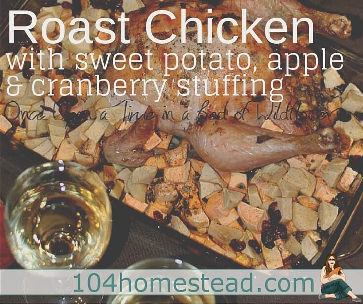Roast Chicken with Sweet Potato, Apple & Cranberry Stuffing