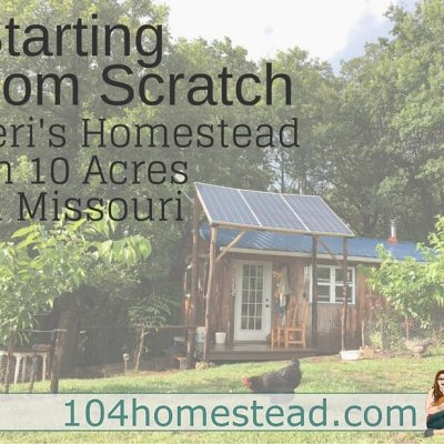 Starting from Scratch: Teri's Homesteading Journey
