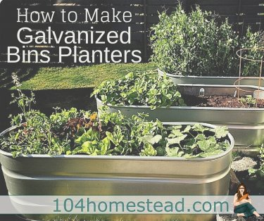 Galvanized bins make handy planters and they are pretty cool looking too. Best of all, this DIY project is one you can easily complete over a weekend.