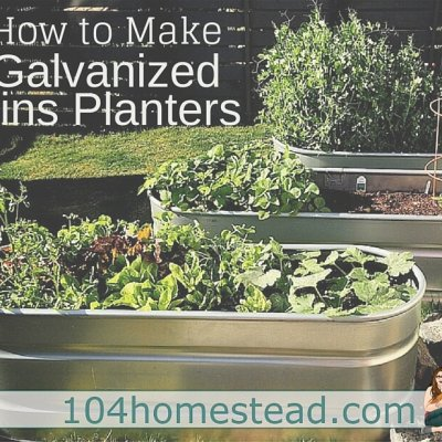 3-Step Guide to Using Galvanized Bins as Planters