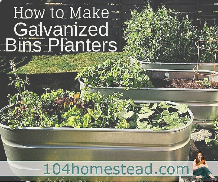 If You Are Looking For The Most Optimal Small Outdoor: A 3-Step Guide To Using Galvanized Bins As Planters