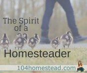 The Spirit of a Homesteader in the Modern Day