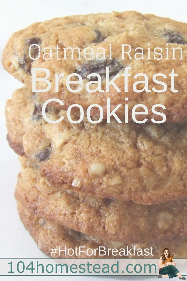 Breakfast cookies are, of course, always a big hit with kids. With applesauce and flax seed, the kiddos have no clue that what they're chowing down on is H-E-A-L-T-H-Y.
