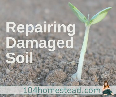 Most of North America's soil has been damaged by poor agriculture and construction practices. Thankfully repairing damaged soil is not incredibly hard or expensive to accomplish.