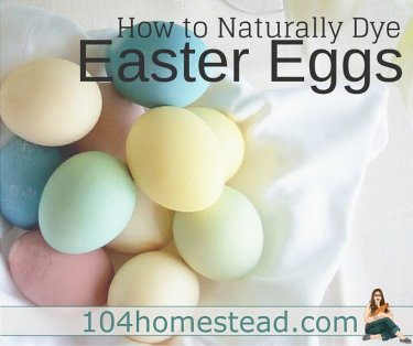 Learn how to dye Easter eggs using natural ingredients like onion skins, instant coffee, blueberries, beets and more. You'll be amazed with the results.