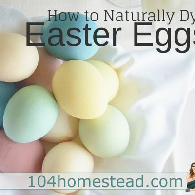 Making Natural Easter Egg Dyes in a Variety of Colors