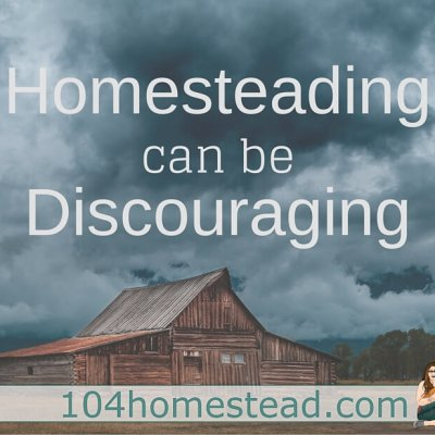 Struggles: Because Homesteading Can Be Discouraging