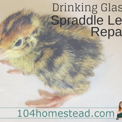 Fixing Spraddle Leg With a Drinking Glass