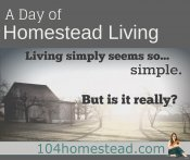 A Day of Homestead Living
